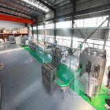 Chaîne de production remplissante de l'eau complètement automatique de Perrier