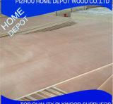 Decoración y mobiliario de Sapele / Okoume BB/CC Contrachapado comercial