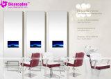 De populaire Salon Van uitstekende kwaliteit Chairr van de Stoel van de Kapper van de Spiegel van de Salon (2035F)