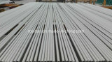 Tubo senza giunte dello scambiatore di calore dell'acciaio inossidabile di ASTM A213 Tp 316/316L
