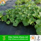 O uso de jardinagem PP de alta qualidade Tecidos de tapete de Ervas Daninhas
