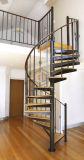 Escalera espiral de cristal/de madera con el pasamano del acero inoxidable