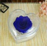 Rectángulo de acrílico de la flor de Rose de la dimensión de una variable del corazón