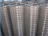 L'acciaio inossidabile ed il rifornimento diretto saldato galvanizzato della fabbrica della rete metallica possono fornire il campione libero