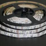 표시를 위한 LED 빛 지구