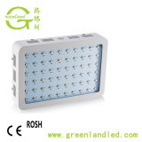 최신 Selling Double Chip 60 PCS LEDs Full Spectrum Plant 300W Full Spectrum LED Grow Lights