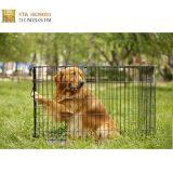 Singolo elemento portante del cane del metallo del portello o cassa del cane