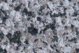 Macchina di pietra di superficie solida della pressa della lastra di quarto & della macchina