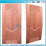 9 moulé porte du panneau de contreplaqué de la peau avec placage Sapelli naturelles
