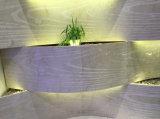 mattonelle della parete lustrate 3D, mattonelle di pavimento 3D per la decorazione