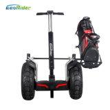 [إكريدر] اثنان عجلة كهربائيّة درّاجة درّاجة كهربائيّة درّاجة ناريّة كهربائيّة