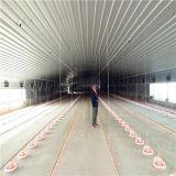 Granaio prefabbricato del pollame con la strumentazione di pollicultura dell'insieme completo