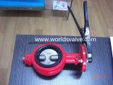 Válvula de borboleta industrial de duplo empuxo Demco em cor vermelha