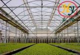 Цветы и фрукты и овощи растущей полиэтиленовые пленки зеленых домов с солнцезащитная шторка в системе