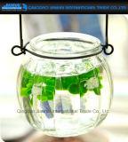 Vaso de plantas de flores de vidro de abóbora com suporte de suspensão fácil