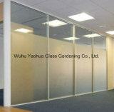 vetro di vetro di /Sandblastered /Acid-Etching di vetro glassato di 4mm-15mm per il portello