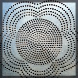 Plaque perforée de tôle d'acier d'acier inoxydable