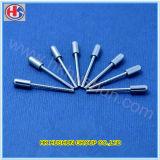 Kundenspezifischer elektrischer runder MetallsteckerPin von Dongguan (HS-BS-0039)