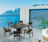 2016 presidenze di giardino calde di vendita e mobilia esterna delle Tabelle che pranza insieme per sei genti (YTA581&YTD121)