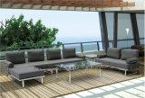 水をはじくクッションが付いている熱い販売の現代屋外のソファー