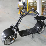 Veicolo elettrico poco costoso adulto di Harley 1000With800W dei Cochi della città