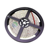 CC luminosa flessibile 12V dell'indicatore luminoso di striscia di SMD5050 LED alta 30LEDs/M