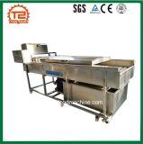 Gemüse-u. Frucht-Waschmaschine-Unterlegscheibe-Pinsel-Erdnuss-Reinigungs-Maschine
