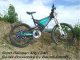 250W-1000W Autómata sin escobillas E-Bici Rueda Motriz aprobación CE