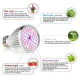 최신 판매 60W 가득 차있는 스펙트럼 LED는 중국에서 가볍게 증가한다