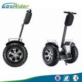 2 wiel die de Elektrische Zelf In evenwicht brengende Autoped van de Blokkenwagen bevinden zich