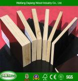 Garantía de alta calidad de construcción con madera contrachapada de reciclar y negro/marrón Film