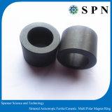 ポンプのための放射状の亜鉄酸塩の磁石の磁化のリング