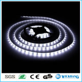 Indicatore luminoso di striscia flessibile di punto culminante 60 LED/M SMD 3014 LED 12V