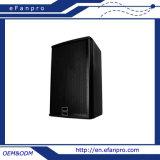 Systems-PROlautsprecher des Lautsprecher-15 '' Ex15 - Takt