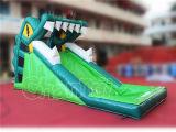 Dia van het Water van de Dia van het Spel van de Mond van de krokodil de Opblaasbare voor Verkoop