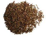 Extrait de fruits cnidium communs pour supplément alimentaire et produits cosmétiques