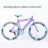 Цветастый Bike горы углерода (ly-a-55)