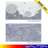 Foshan fábrica 5D digital de inyección de tinta azulejo de la pared de cerámica (WG-A3634A)