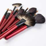 21PCS compone cepillos cosméticos faciales con kit de belleza Bolsas