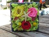 La flor con buena calidad y precio preservó la flor fresca