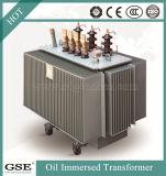 Transformator Transformatoren/Ppower van de Transformatoren van de distributie de Ondergedompelde Olie met TUV Norm