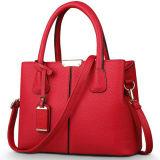 Sacchetto di Tote elegante su ordinazione della signora Handbag Hot Selling per le donne a Guangzhou Sy7997