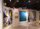Panneau de mur pour la pièce d'étalage de galerie de peinture