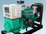 Generatore di legno senza spazzola del gas 10kw di AVR
