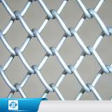 Galvanized/PVC 입히는 체인 연결 메시 철사 /Fence 검술