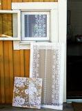Edelstahl-Fenster-Fliegen-Bildschirm/Fenster mit Fliegen-Bildschirm Windows