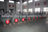 Guangdong Olenc Power Generator Company mit TUV/SGS/Ce/ISO Bescheinigung