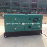 50 kilovatios se dirigen el tipo silencioso diesel de Genetrator de la alta calidad del uso
