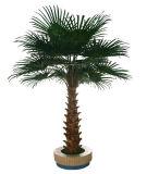 専門の製造業者の装飾のための人工的なヤシの木の人工的な木