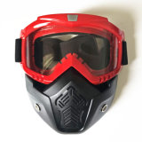 기관자전차 라이더 (AG019)를 위한 Anti-Fog 고글 또는 바람 유리